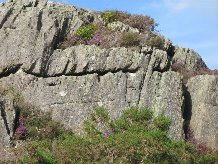 Gilfach Crags - Concretions in one bed, eroded away